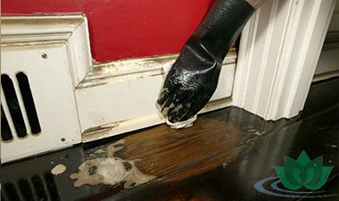 Как убрать квартиру после ремонта быстро и эффективно