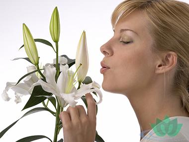 Как убрать неприятный запах